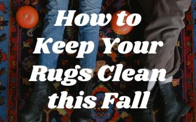 How to Keep Your Rugs Clean this Fall